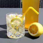Hyldeblomstsaft med citron og appelsin