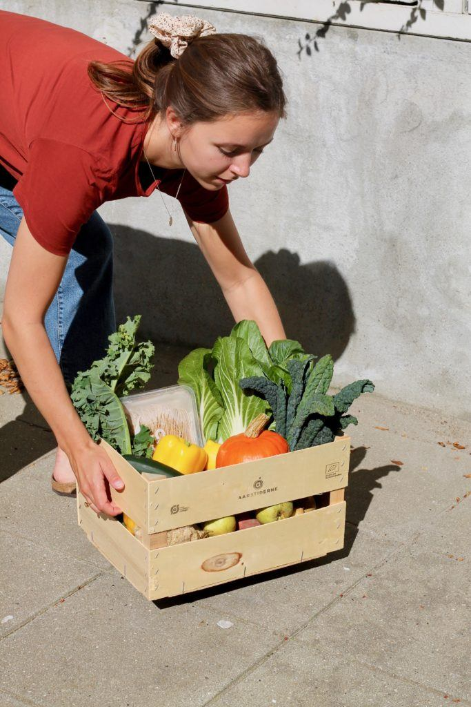 Aarstiderne VegetarKasse